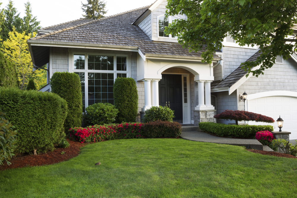 Budget-Conscious Ways to Elevate Your Home's Curb Appeal