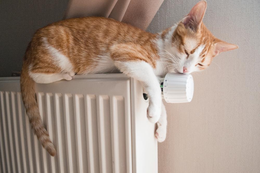 Avoiding Emergency Heating Repair